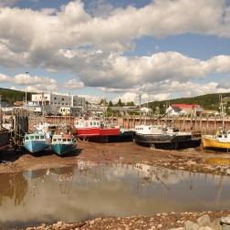 IMT Newfoundland 2010 WP 2