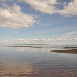 IMT Newfoundland 2010 WP 3